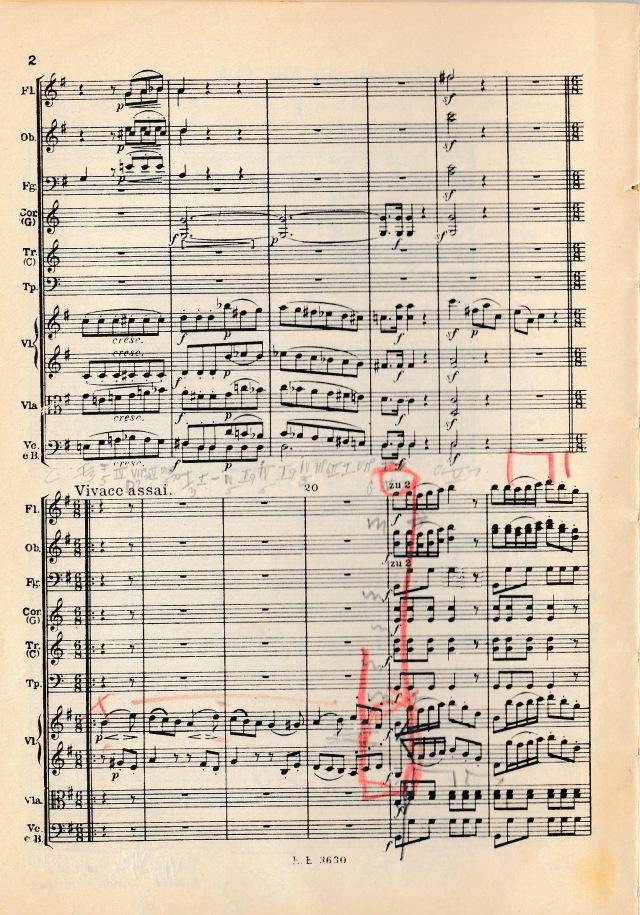 Haydn 2a.jpg