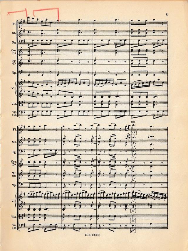 Haydn 2b.jpg